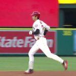 観戦記:大谷久々の15号を一塁側スタンドから(動画あり)