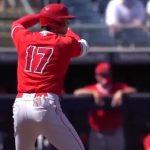 MLBサイト「ヤツは変態だ!(ブレーク・スネル)」